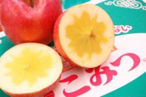 【浜松実店舗】可愛いけどすごいんです!『こみつ』りんごご試食♪