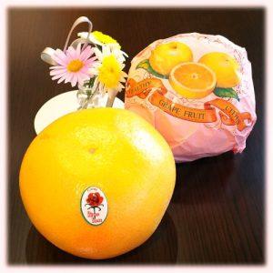 【浜松実店舗】 タプタプッ!ジューシー!グレープフルーツご試食&セール~♪
