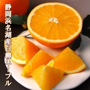 【浜松実店舗】土日サービス♪身体と心に染み渡る『ホットみかんジュース』