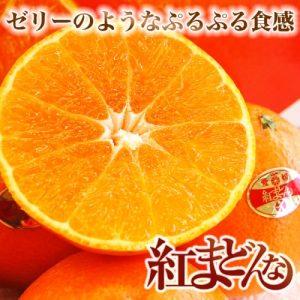 【浜松実店舗】プルプルのゼリーみたいな「紅まどんな」ご試食&セール!