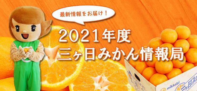 2021年度三ヶ日みかん情報(その1) 早生みかん速報