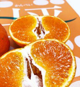 ○○ってボケた味の柑橘だと思っていた方へ朗報